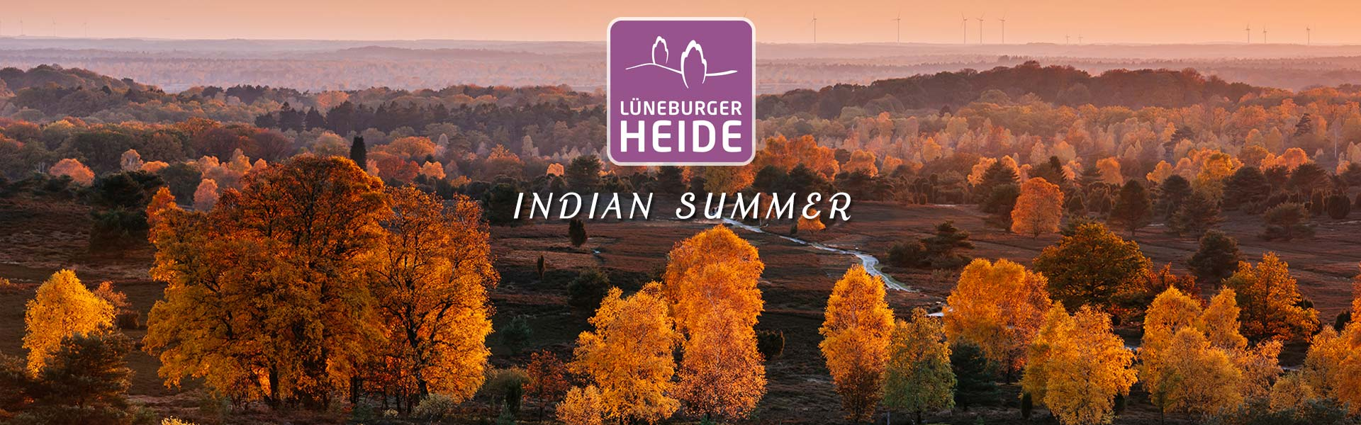 Der Indian Summer in der Lüneburger Heide